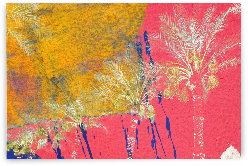 Palms On Pink And Yellow by Lawrence Costales