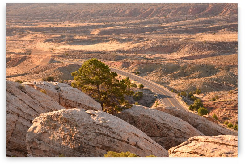 The View Down Below At Sunrise by PieLar Inspirations