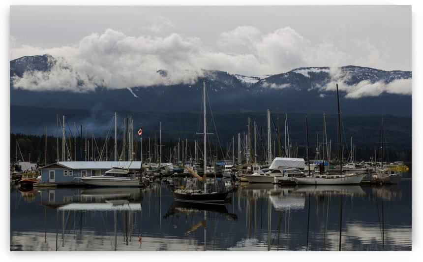 Deep Bay Marina by Randy Hall