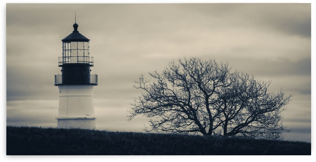 Light Over the Hill - Portland Head Lighthouse = Maine by Dave Therrien