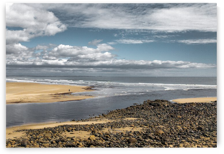 Before Summer Comes - Ogunquit Maine by Dave Therrien