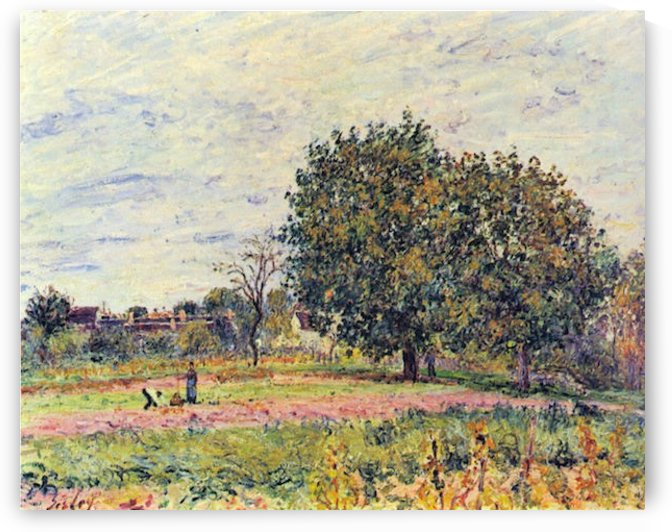 Walnut trees in the sun, in early October by Sisley by Sisley