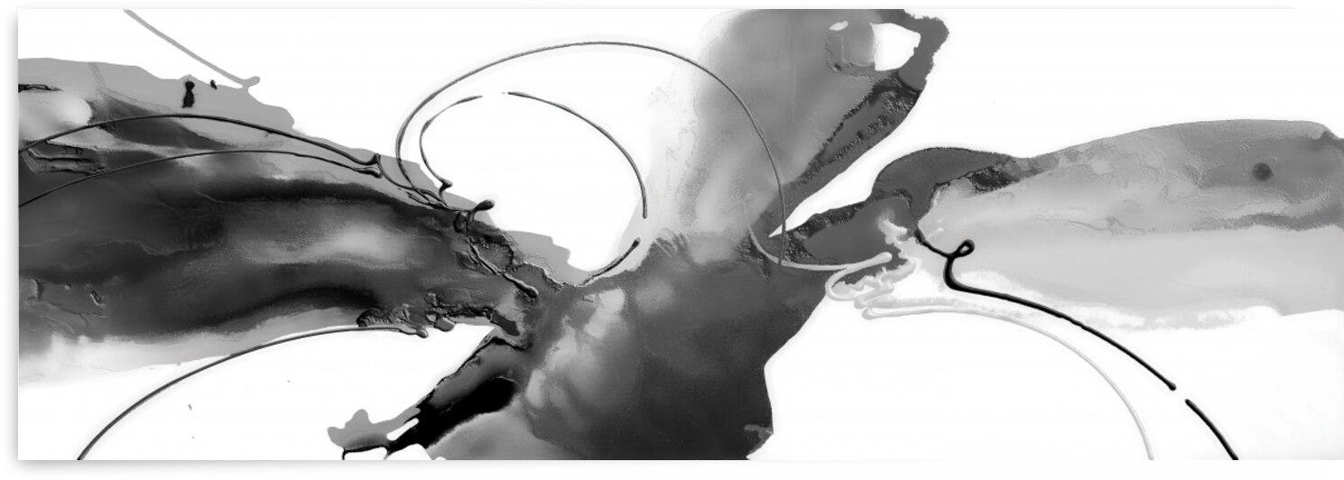 Abstract Black White Britto QB229 by SIDINEI BRITO