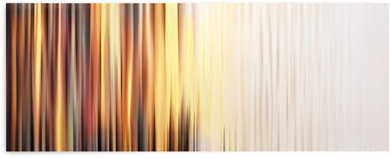 Abstract Art Britto - QB265 by SIDINEI BRITO