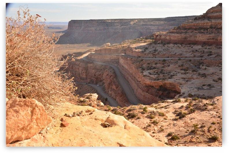 Dangerous Desert Dirt Road Up Plateau by PieLar Inspirations