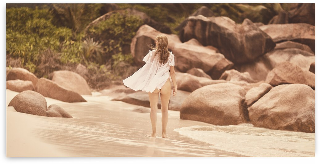 I love Seychelles by Dmiry Laudin