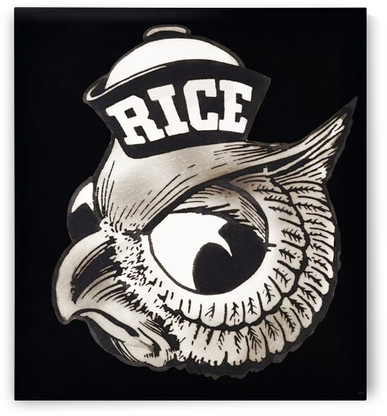Vintage Fifties Rice Owl Art by Row One Brand