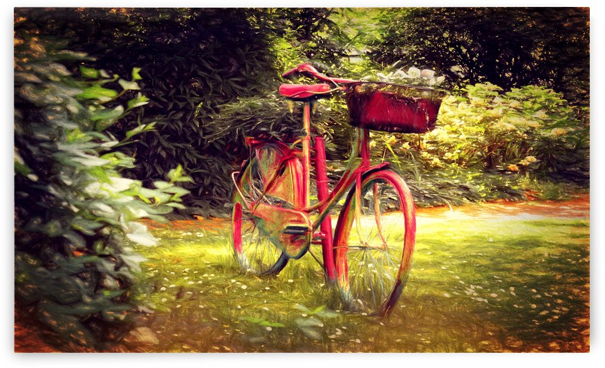 Fahrrad by Dagmar Marina