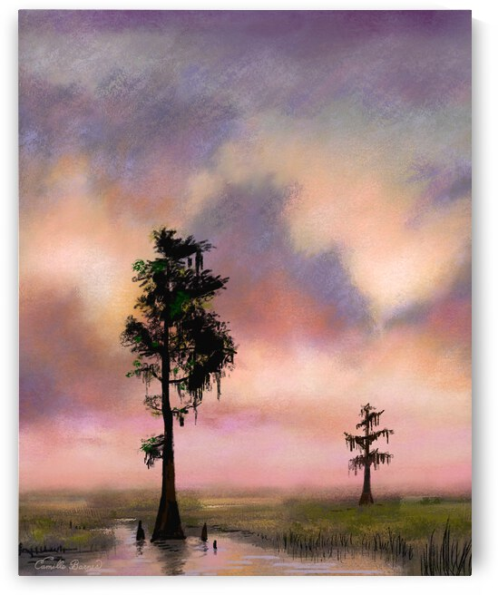 Bayou Sunset Manchac by Camille Barnes