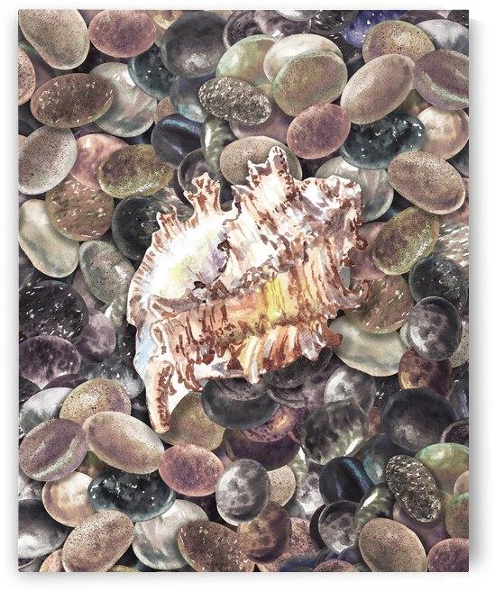 Rock And Seashell Collection Watercolor Painting Beach Rocks III by Irina Sztukowski