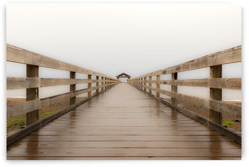 Bridge to Knowwhere by Kevin Barrett