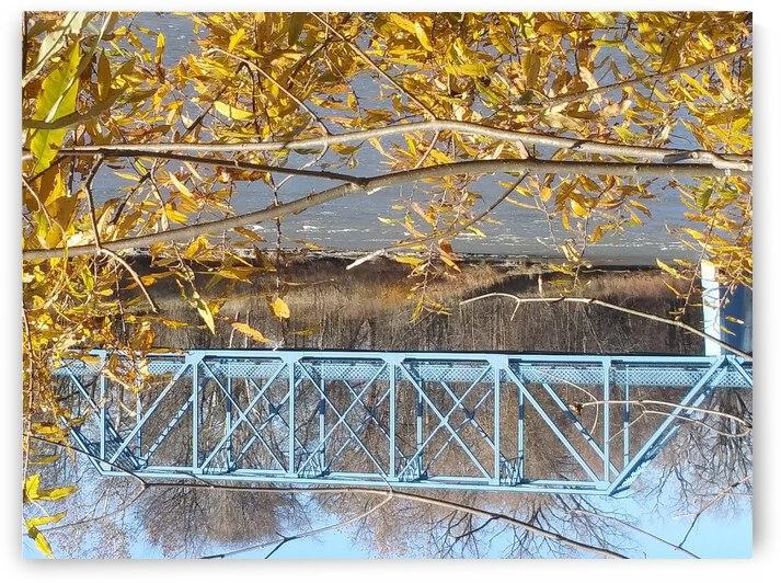 SANDUSKY RIVER FREMONT OHIO by HELP MY FURY FRIENDS PROJECT