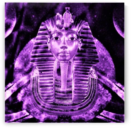Pharao Purple Gold by Winchawa