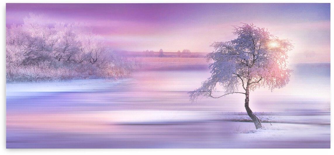 Dreamy Winter Landscape 3  by Angel Photo Art