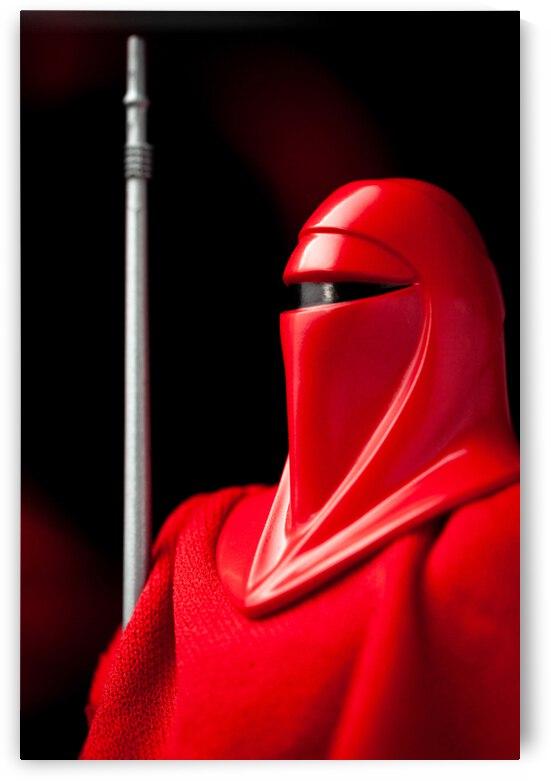 Royal Imperial Guard by Raul Zavala Studio