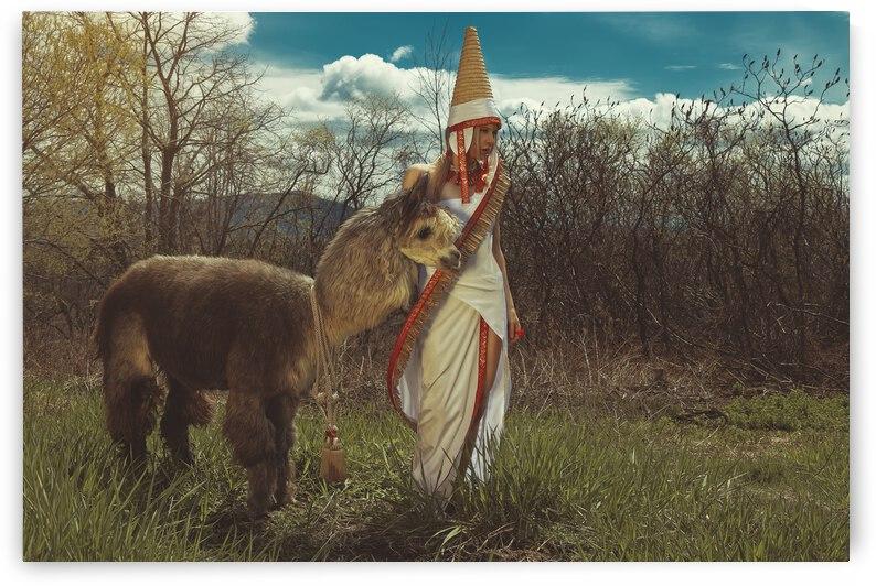 Andes VII by Artmood Visualz