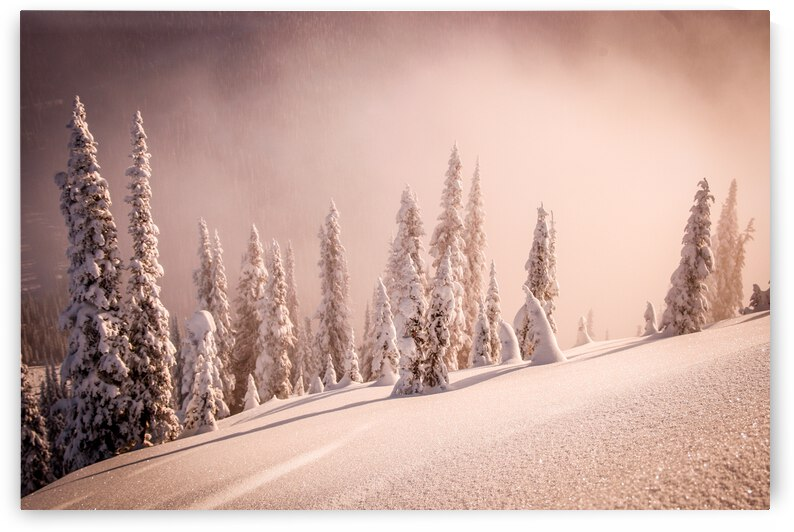 Glowing Morning - Baldface Lodge by Stephan Malette