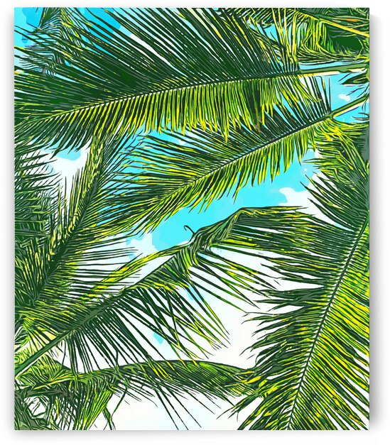 Life Under Palm Trees  Colorful Bohemian Beachy  Tropical Travel Nature by 83 Oranges
