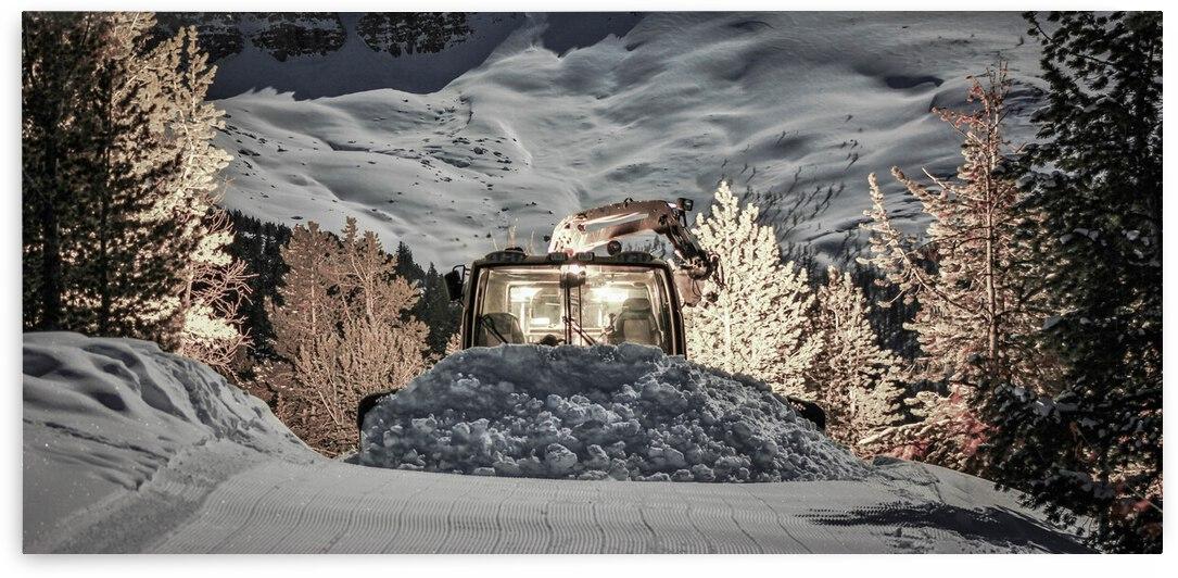 Gold Snowcat by Stephan Malette