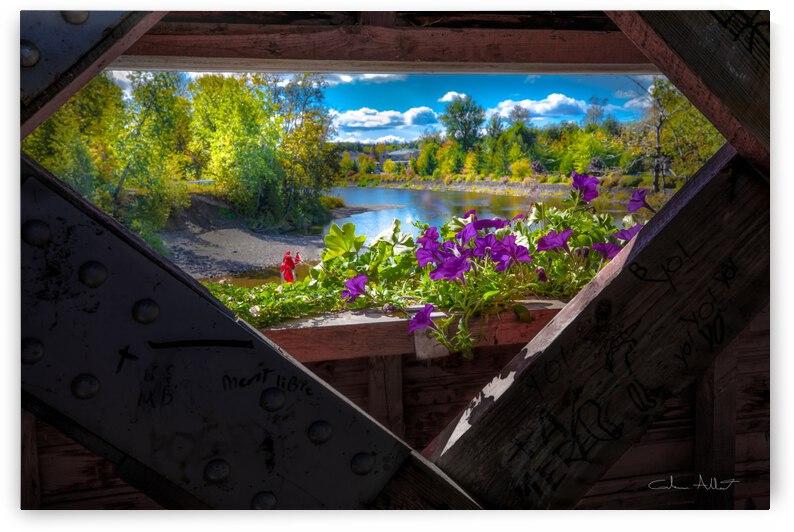Pont Beausejour by Glenn Albert