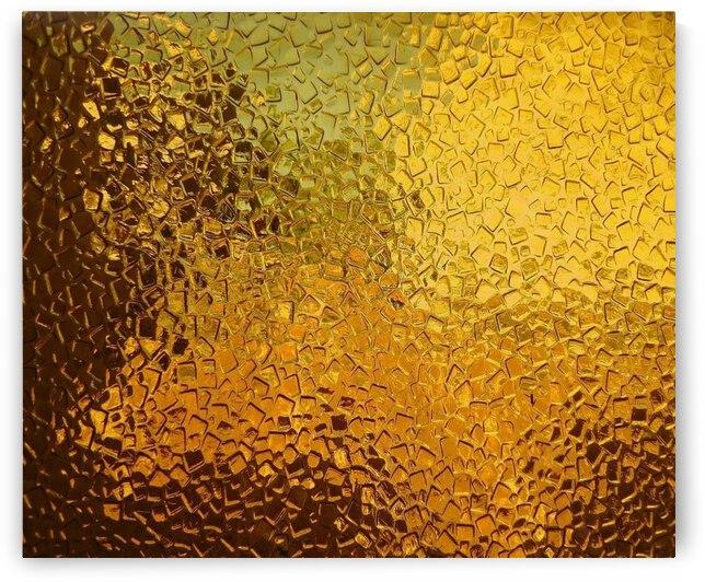 Golden Wonder by Dorothy Berry-Lound