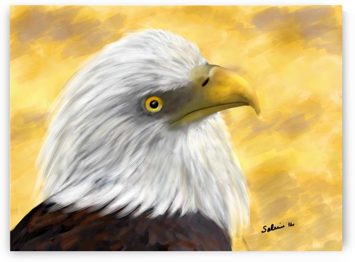 Proud Eagle by Sarah Tracy