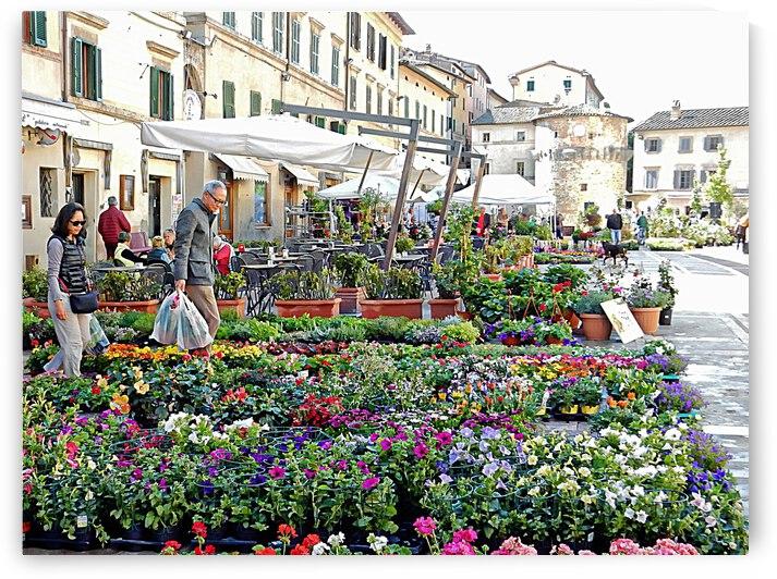 Annual Flower Market Cetona Tuscany by Dorothy Berry-Lound