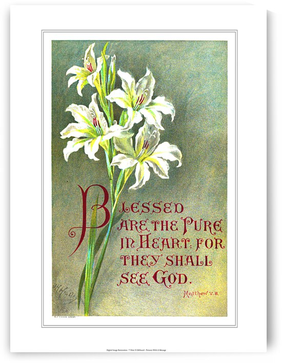 Blessed are the Pure in Heart by Pictures With A Message