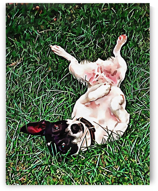 Upside Down Jack Russell Terrier by Dorothy Berry-Lound
