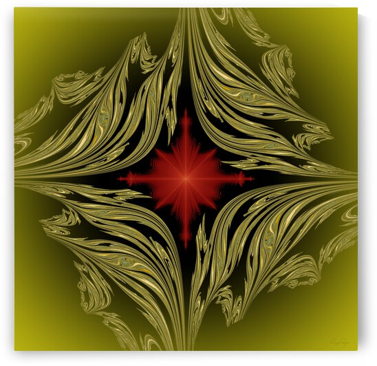 Framed flower red gold by Ray Roza