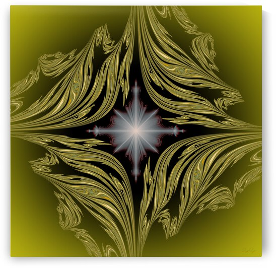 Framed flower grey white red gold by Ray Roza