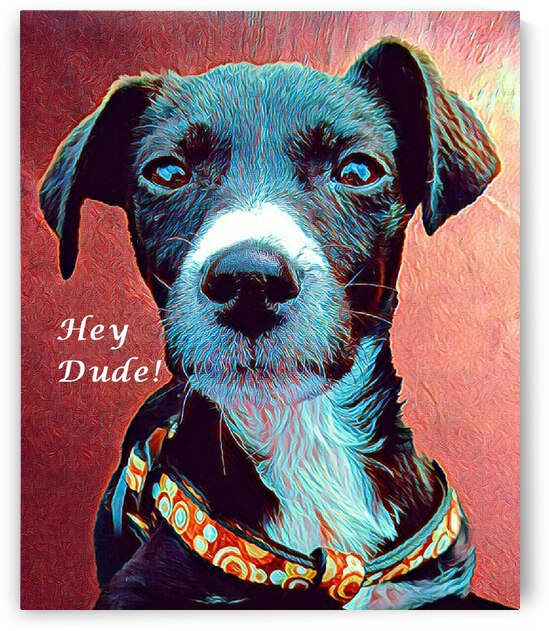 Hey Dude by Dorothy Berry-Lound