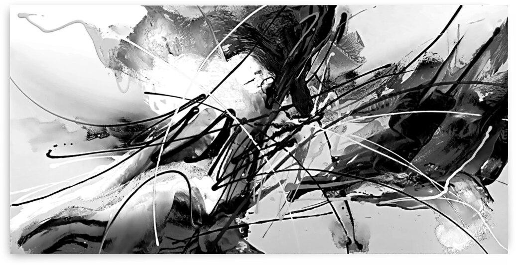 Abstract Black White Britto QB304 by SIDINEI BRITO