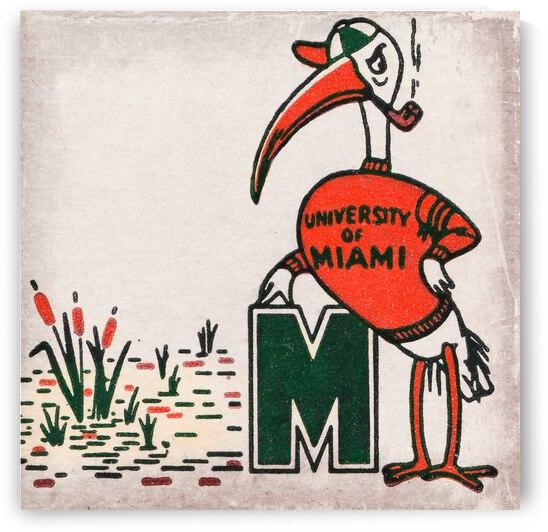 Vintage Fifties Miami Hurricane Art by Row One Brand