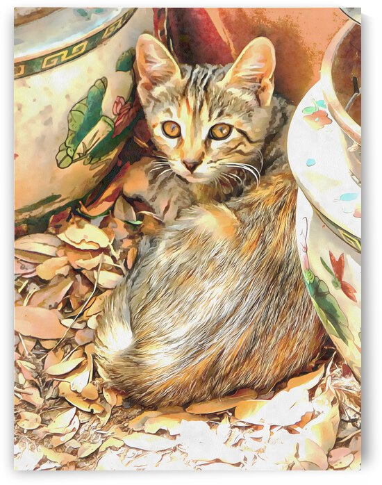 A Comfy Niche by Dorothy Berry-Lound