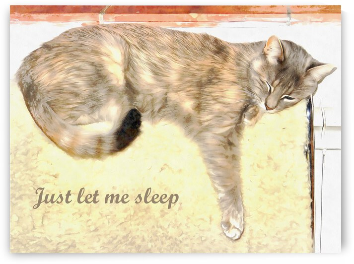 Just Let Me Sleep by Dorothy Berry-Lound