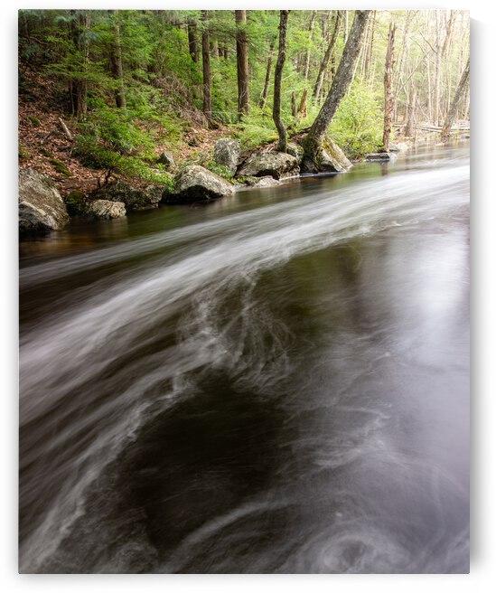 Spring Stream by Dimitry Papkov