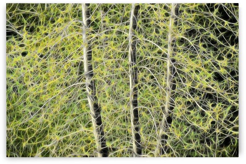 Simulated Saplings by COOL ART BY RICHARD