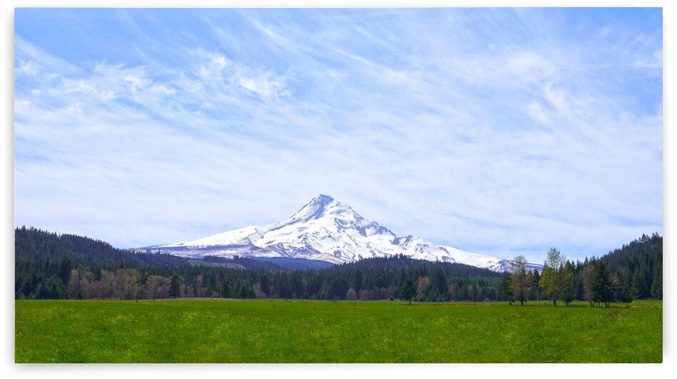 Majestic Mount Hood   Cascade Mountain Range Oregon by 1North