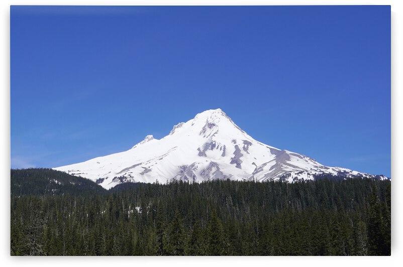 Blue Skies over Mount Hood by 360 Studios