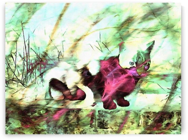 Cat Spirit by Dorothy Berry-Lound