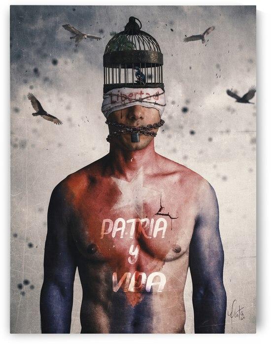 Patria y Vida Arte by John Mata
