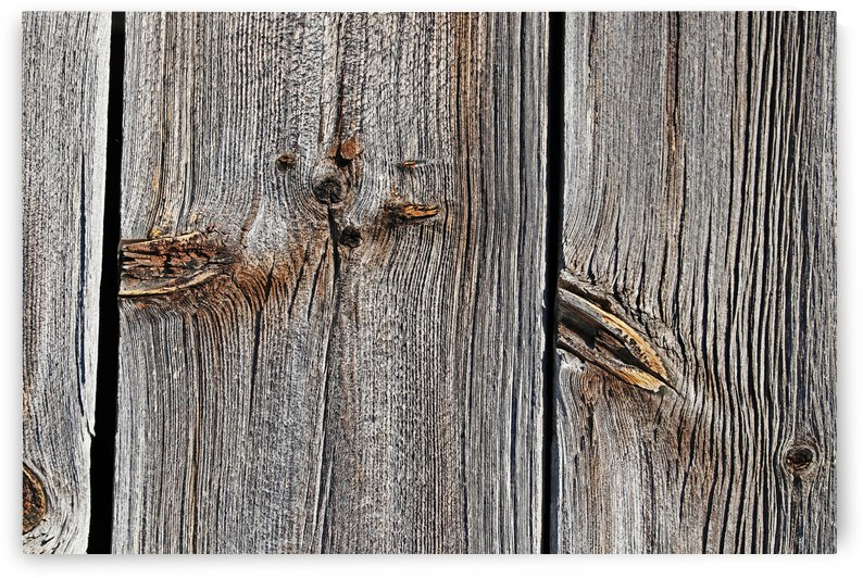 Knots And Texture by Deb Oppermann