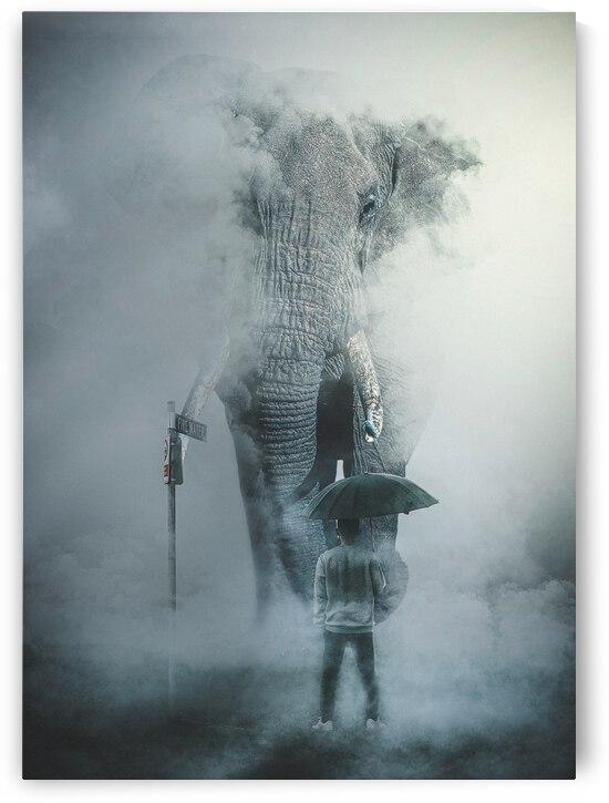 Elephant by Max Stark