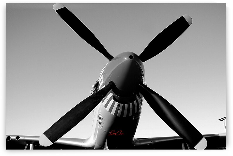 P-51 Prop Limited Edition 50 Prints only by BeauCheri