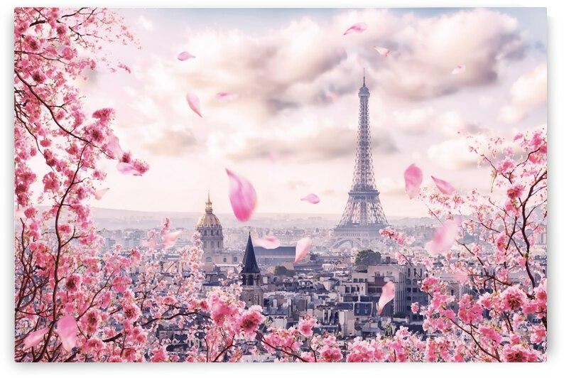 Pink Paris by Manjik Pictures