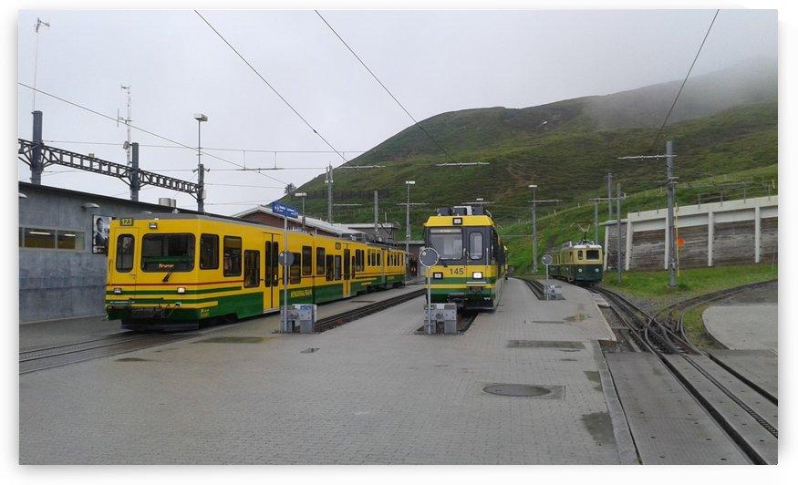 Trains along the railroad to Jungfrau, Switzerland by Vlad Radulian