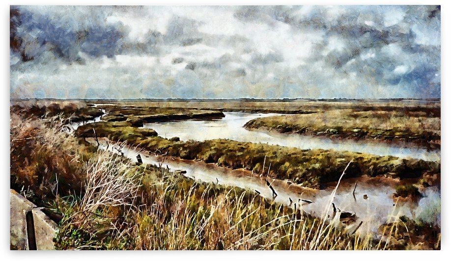 Wild And Stormy Mud Flats by Dorothy Berry-Lound