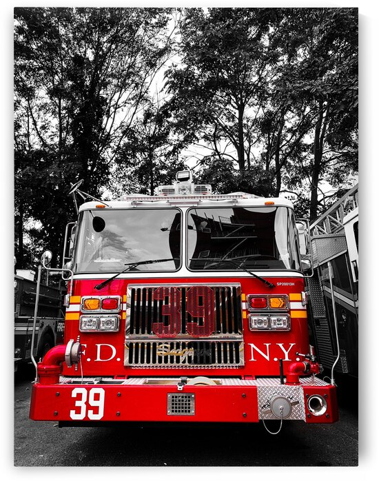 Engine 39 In The Woods by Patricia Gontz