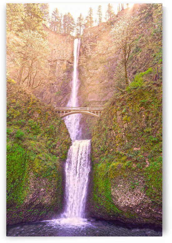 Multnomah Falls Bathed in Sunlight   Columbia River Gorge National Scenic Area   Oregon Pacific Northwest by 1North